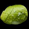Авокадо - 60 г